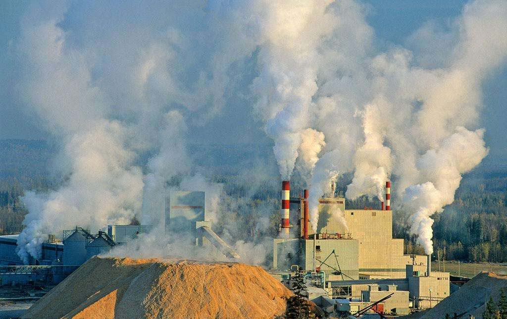 Cardboard industry consume natural resources and polluting