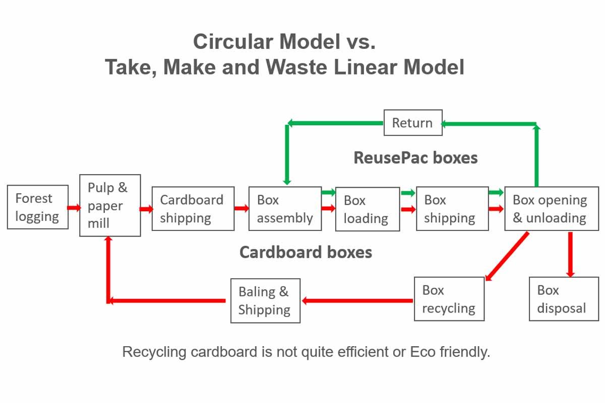 Reusable box circular model vs cardboard box linear model.